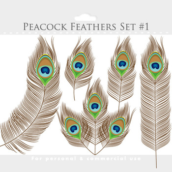 Peacock feather clipart - peacock clip art, feathers, blue, green, elegant