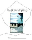Peak by Roland Smith Comprehensive Literature Unit