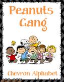 Peanuts Gang- Charlie Brown - AR Chart