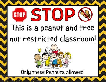 Peanuts Snoopy Peanut Free Poster