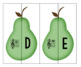 Pear Pairs ~ Absolute Pitches - Note Names