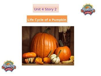 """2nd grade  story 4.2 """"Life of A Pumpkin"""""""