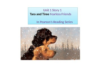 "2nd grade Unit 2 Story 1 ""Tara & Tiree"" words"