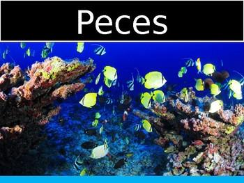 Peces/ PowerPoint