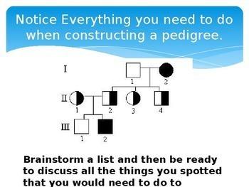 Pedigree Bundle:  Powerpoint, Flipbook, Lab
