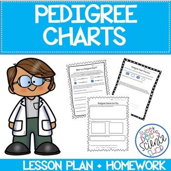 Pedigree Chart Lesson Bundle: Worksheet, Exit Slip and Homework included
