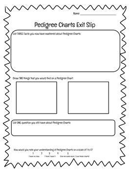 pedigree chart lesson bundle worksheet exit slip and homework included. Black Bedroom Furniture Sets. Home Design Ideas
