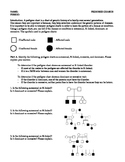 Pedigree Chart: Worksheet