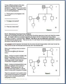 Pedigree Genetics: Introduction Questions and Homework for High School Biology