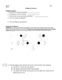 Pedigree Practice Worksheet and Key