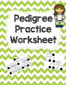 pedigree worksheet by seriously science teachers pay teachers. Black Bedroom Furniture Sets. Home Design Ideas
