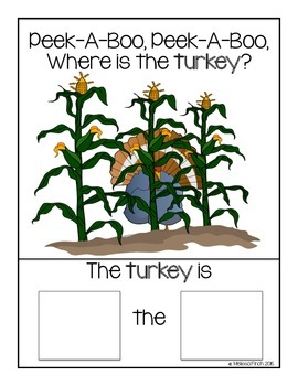 Peek-A-Boo, Where is the Turkey?-Adapted Book for Autism?