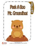 Peek-a-Boo Mr. Groundhog