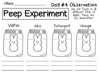Peep Experiment