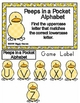 Peeps in a Pocket Basic Skill File Folder Games