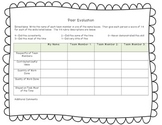 Peer Evaluation Rubric