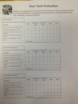Peer Team Evaluation Rubric