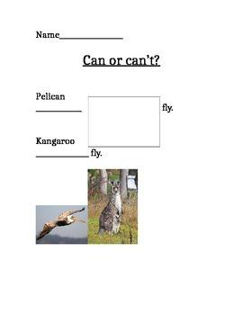 Pelican Pelican't : Can and Can't ESL or Kindergarten