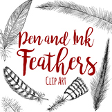 Pen and Ink Line Art Feathers Clip Art