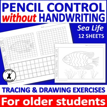 {Fine motor control} {Handwriting older students} {occupational therapy}