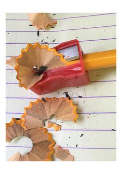 Pencil Sharpening Photograph