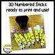 Pencil Sticks & Partner Pairs Classroom Management Tool