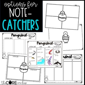 Penguin Text Pack: Differentiated printable texts for classroom research