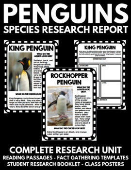 Penguin Research Study Project - Facts, Information, and Activity!