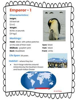 Penguin - A Study, Research and Report Project