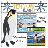 Penguin Bundle | Antarctica | Virtual Field Trip | Informa