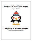 Penguin CVC and CVCe Words and Math Fun