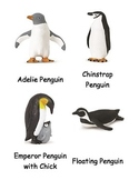 Penguin Cards