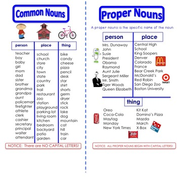 Penguin Chick:  Common and Proper Nouns