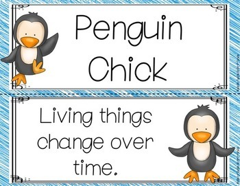 Penguin Chick Focus Wall Anchor Charts and Word Wall Cards