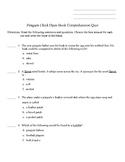 Penguin Chick Open Book Comprehension Quiz