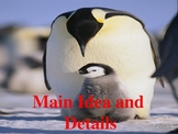 Penguin Chick Power Point- Main Idea with Journey's Edition