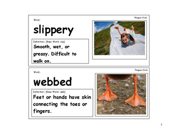 Penguin Chick Vocabulary Cards