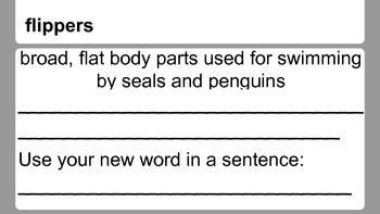 Penguin Chick Vocabulary Slides