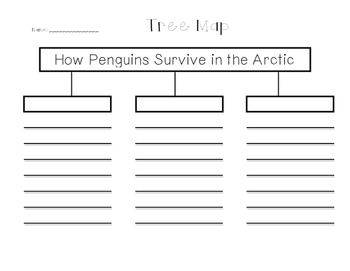 Penguin Chick: Write from the Beginning