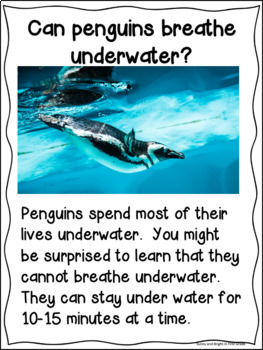 Penguin Close Reading for Kindergarten and First Grade