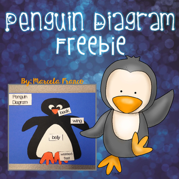 Penguin Diagram Freebie