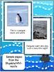 Penguin FREEBIE Non-fiction Shared Reading Singable/Poem