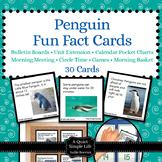 Penguins Activity