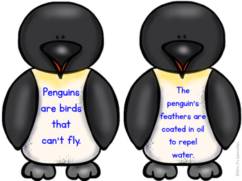 Penguin Facts and Sensory Activity