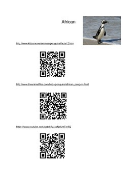 Penguin Facts/Videos with QR Codes