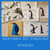 Penguin Gentoo Anatomy Activities (Spanish)