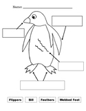 Penguin Worksheets