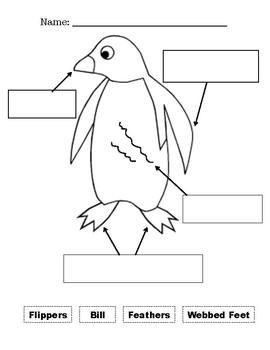 Penguin Worksheets