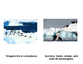 Penguin Informative K-1 Leveled Reader