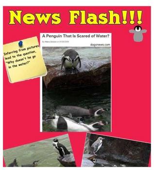 Penguin Inquiry Lessons